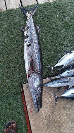 Ροατάν, Ονδούρα: Fishing is our life