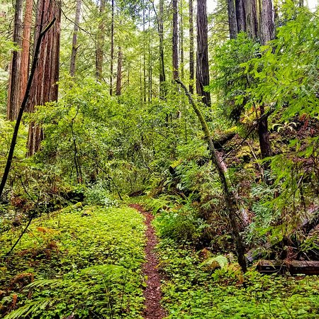 """La Honda, Californië: """"Get lost"""" 👍⛰😊🏞"""