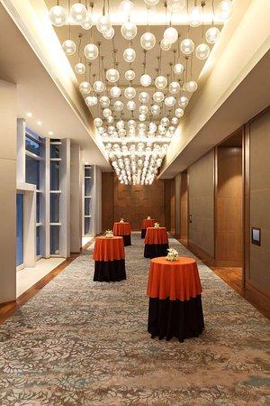 Hyatt Regency Ahmedabad: Ballroom