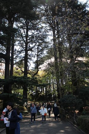 Shinjuku Gyoen National Garden: General views of the park