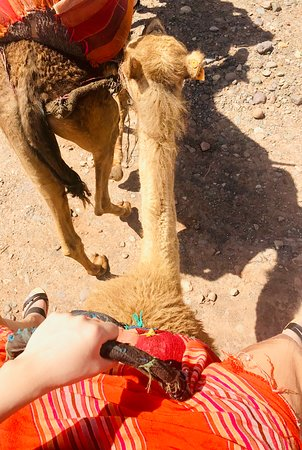 Day tour in Agafay dessert and 3 Valleys Atlas Mountains With Locals. – kép