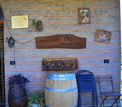 """Alla scoperta dell'azienda vinicola """"Valle delle Lepri"""" di Coriano: tra tradizioni e calici di vino biologico"""
