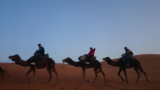 Camel Ride in Marrakech - Morocco Camel Tours