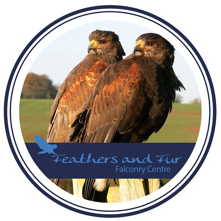 ‪Feathers and Fur Falconry Centre‬