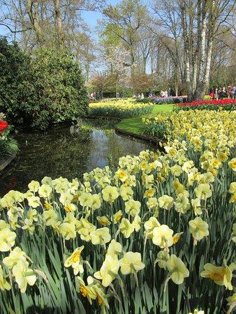 Skip the Line: Keukenhof Gardens Direct Entrance Ticket: Tellement magnifique