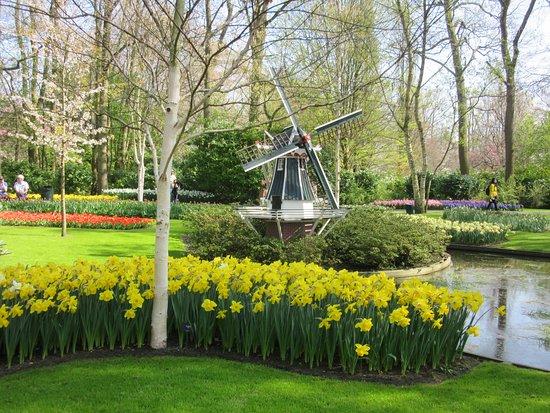 Skip the Line: Keukenhof Gardens Direct Entrance Ticket: Beau petit moulin ...