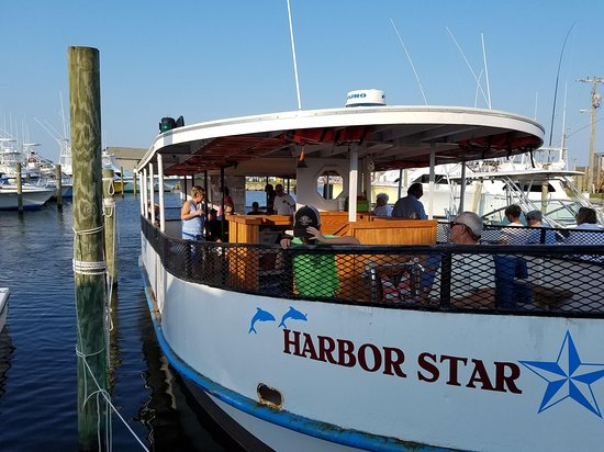 Harbor Star Dolphin Tours