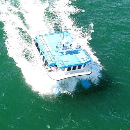 Westward Fishing & Tours