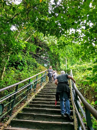 Elephant Mountain (aka Nangang District Hiking Trail): Hiking up Elephant Mountain