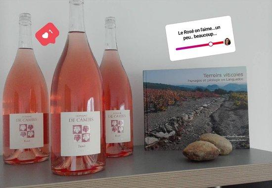 Domaine de Cambis: Raisins, vin et terroir 👌🏻🍷