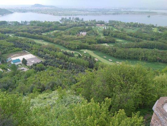 Kashmir Tulip Festival: Srinagar View