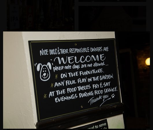 West Huntspill, UK: Dogs welcome