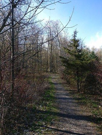 Waterloo, Canadá: Westside Trails