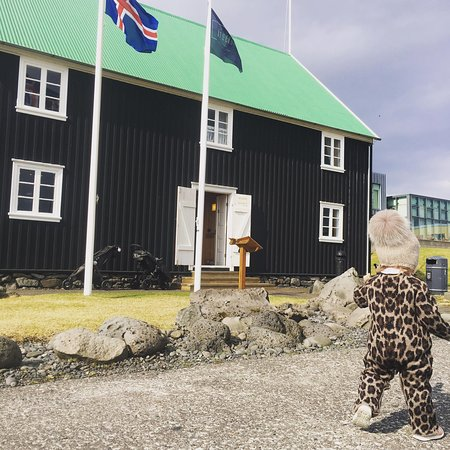 Olafsvik, Islandia: Our boss has no time for photos.