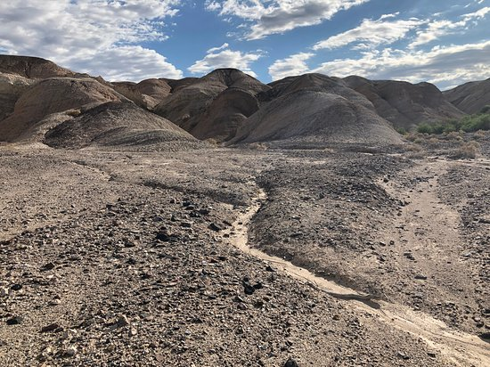 Stovepipe Wells, Californie : Kit Fox Hills - Death Valley (3)