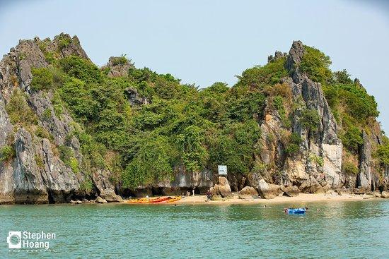 Kayaking surround freedom island