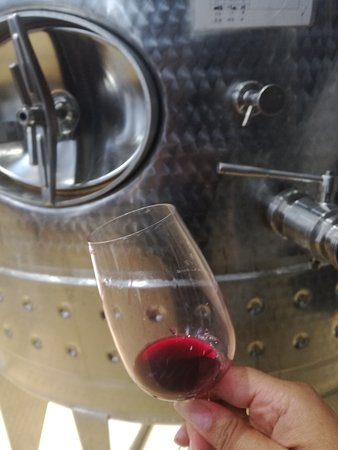 tasting wine from the Cellar