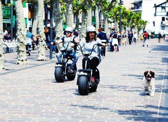 M2A Bikes