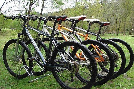 Santa Comba Dao, Bồ Đào Nha: Mountain Bikes Orbea Abelenda Bike Rental