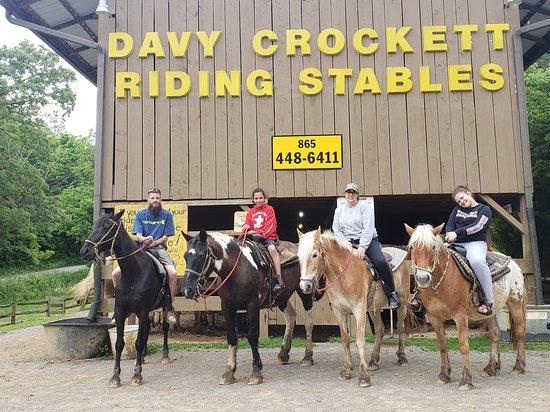 ‪Davy Crockett Riding Stables‬