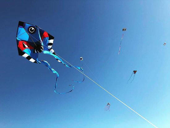 Livingston, MT : Fish Pyro Delta from Gomberg Kites.  It's 9 feet wide and 30 feet long!