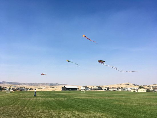 The Livingston Kite Company hosts a monthly kite flying event. It is the first Sunday of every month from May through September at the Northside Park and Soccer Fields (14th & Summit).  Come join us!