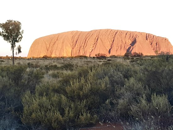 Ayers Rock Day Trip from Alice Springs Including Uluru, Kata Tjuta and Sunset BBQ Dinner: The colour of Uluru changes constantly