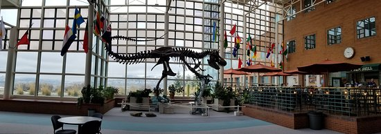 The have the T-Rex cafe right next door to this big guy.