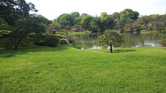 Rikugien Garden: 六義園2:玉藻の浜から吹上茶屋を望む