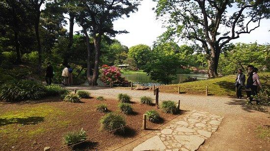 Rikugien Garden: 六義園4: