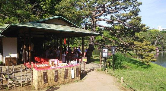 Rikugien Garden: 六義園5:吹上茶屋ここで抹茶を飲む。