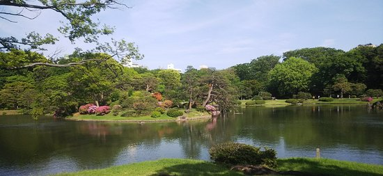 Rikugien Garden: 六義園6:吹上茶屋から中之島、対岸を望む。