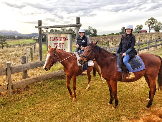 Pokolbin, Australia: You can be an absolute beginner and feel safe on the gorgeous horses, Ming and Lee enjoying their ride.
