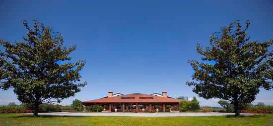 Museo del Vino - Vigneti Pittaro