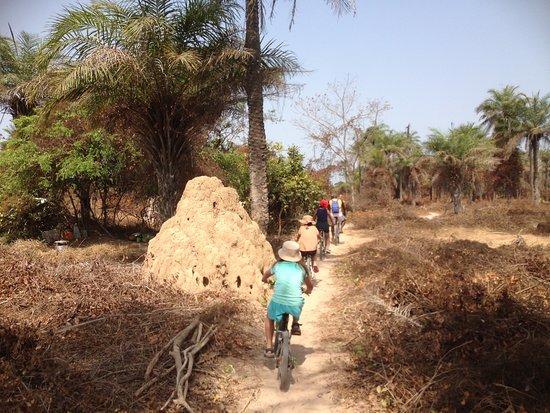Casamance VTT: Chemins étroits autour d'oussouye