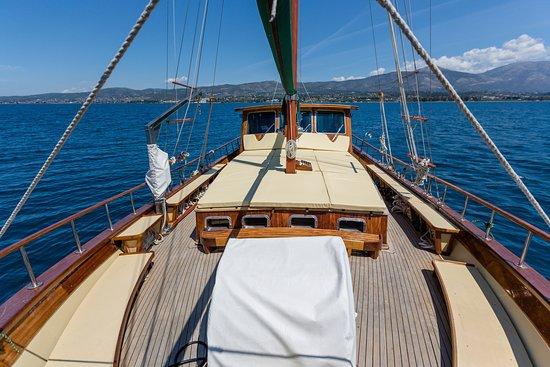 Pegasus Marine Daily Cruises
