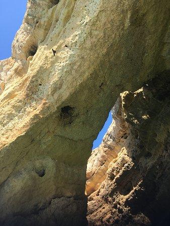 Dolphin Watching and Caves Cruise: Praia da Albufeira