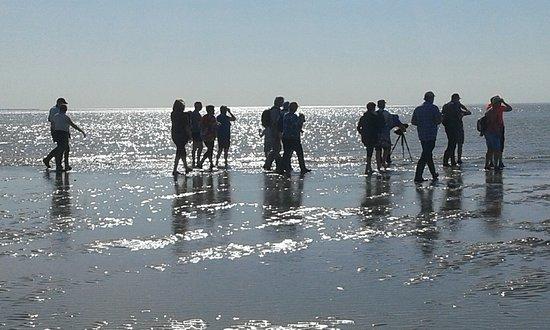 Favieres, ฝรั่งเศส: La Maye les grandes marées