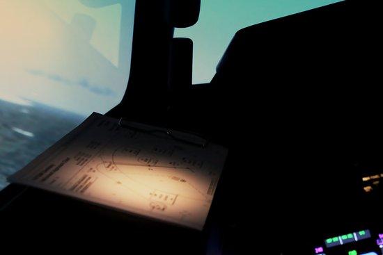 Fly Sim Flight