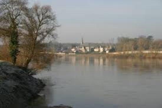 Cour sur Loire, Frankrike: Vue depuis l'autre rive