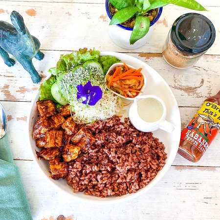 The Vegan Dinosaur: Spiced Asian Rice Meal