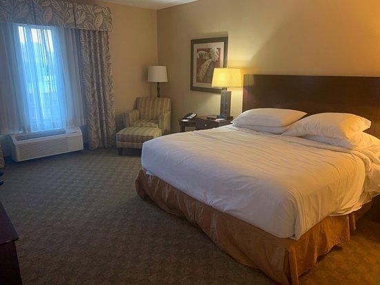 坦帕 USF 布希花園智選假日套房飯店張圖片