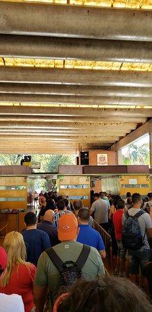 Sao Paulo Zoo Admission Ticket: Fila para bilheteria.