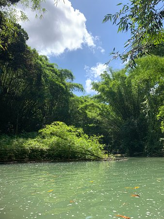 Clarendon Parish, Jamaica: Martha Brae river