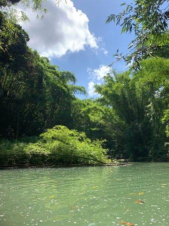 Clarendon Parish, ג'מייקה: Martha Brae river