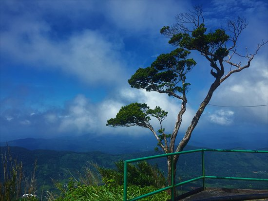 Deniyaya, Σρι Λάνκα: #Gongala  #Sri Lanka #Hiking