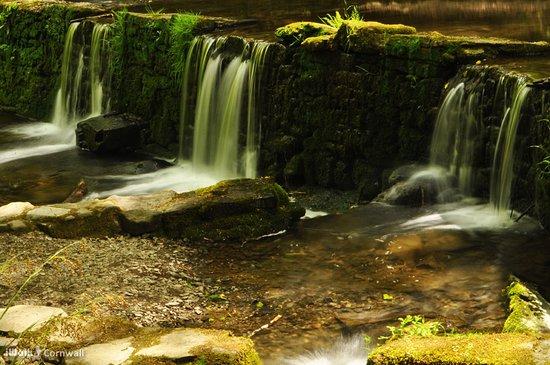 Calstock, UK: Weir at Cotehele Mill