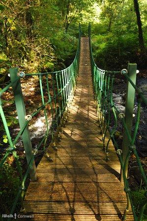Rilla Mill and Plushabridge circular walk