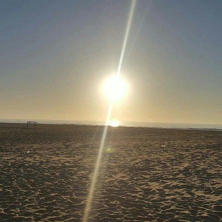 Buenos días les desea La Taberna Del Mar Alboraya