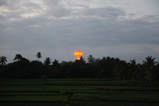 Landscape Picture Of Luxe Villas Bali Ubud Tripadvisor